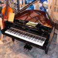 Bosendorfer Grand Piano 170 - USED