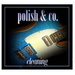 Polish & Co Guitar Polish