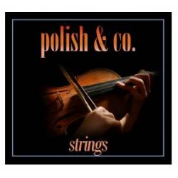 Polish & Co Strings Instrument Polish